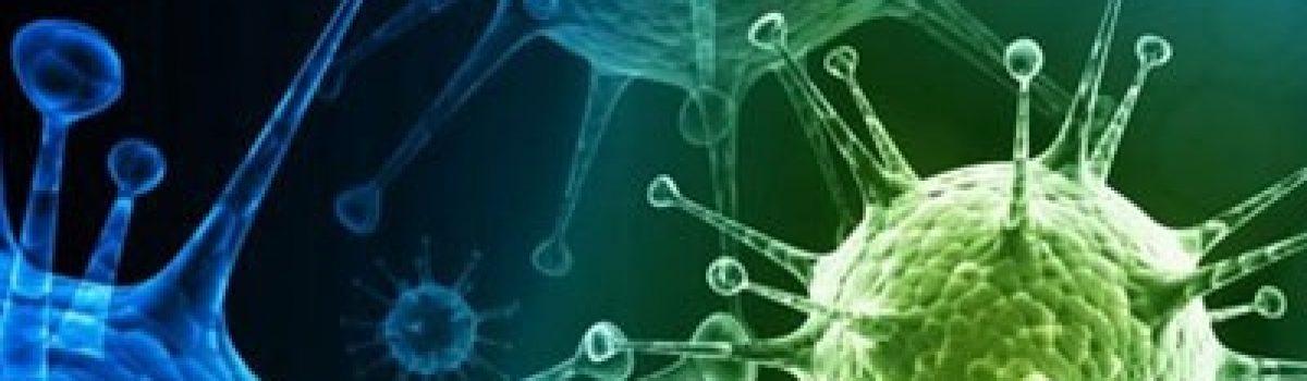 Νέα στοιχεία για την προέλευση του ιού του έρπητα