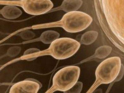 Συχνές ερωτήσεις για την ανδρική γονιμότητα