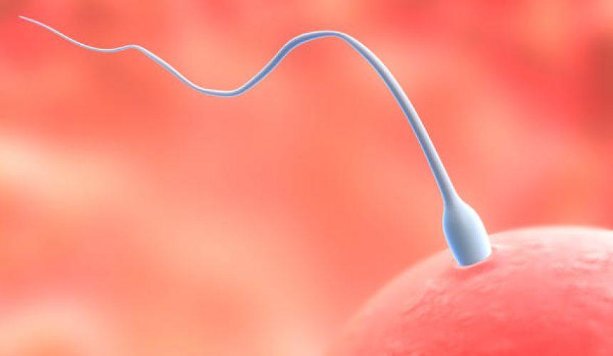 Η ανδρική γονιμότητα και τα αντιοξειδωτικά