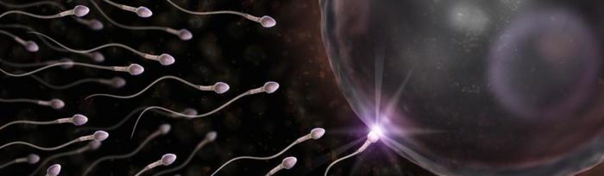 Οι επιστήμονες εξηγούν τη μείωση των σπερματοζωαρίων στο σπέρμα του σύγχρονου άνδρα