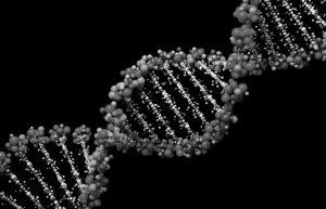 Εντοπίστηκε ο πρώτος γενετικός παράγοντας κίνδυνου για τη στυτική δυσλειτουργία